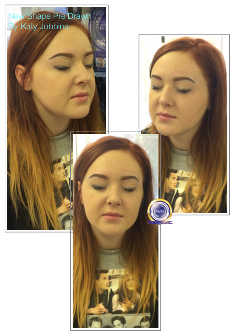 Before Permanent Makeup Natural Hair Simulation